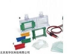 MHY-24395 小型垂直电泳槽