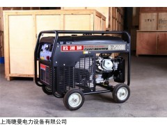 B-250GDI 250A汽油发电焊机欧洲狮动力