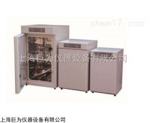 上海電熱鼓風干燥箱