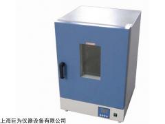 浙江電熱鼓風干燥箱