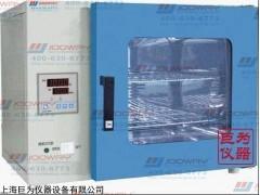 江蘇電熱鼓風干燥箱