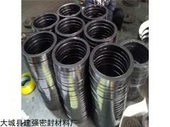 供应柔性石墨填料环