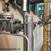 TORRIX 高温可配磁翻板的进口磁致伸缩液位计