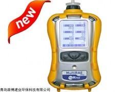厂家一级代理的 PGM-6200六合一气体检测仪
