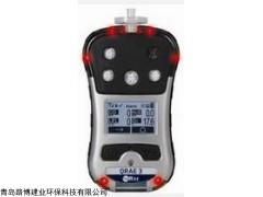 首款无线传输PGM-2500四合一气体检测仪
