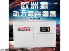 出口30KW汽油發電機價格