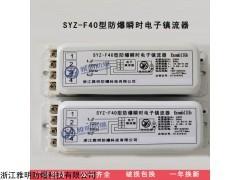 SYZ-F40型 40W一托一电感式防爆瞬时镇流器