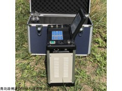 带锅炉厂使用的LB-70C系列烟尘烟气测试仪