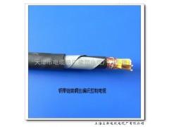 9芯 ZR-KVV22阻燃控制电缆