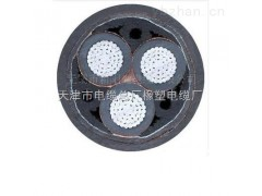 YJLV22-3*150钢带铠装电力电缆