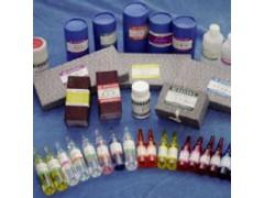9012-36-6琼脂糖SFR生物技术级