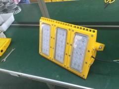 CCD97-F120w防爆免维护节能照明灯