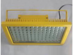 CCD97-F100防爆免維護節能LED照明燈