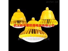 BLD190-30WBLD190隔爆型LED防爆灯