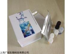 人(FoxO3)试剂盒标曲