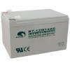 赛特蓄电池BT-12M24AC销售代理直供价