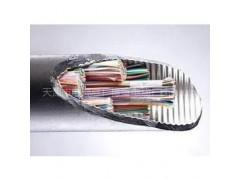 HYAC-50*2*0.7自承式通信电缆