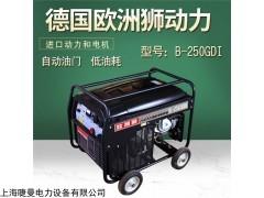 250A汽油发电电焊机本田价格
