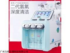 LB-QY 韩国氢氧小气泡手具的具体作用大气泡厂家说明书仪器简介