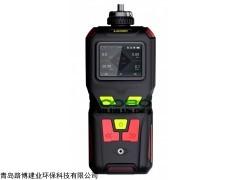LB-MS400便携式氧气检测仪