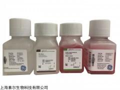 12800017 GibcoDMEM(高糖)含丙酮酸钠