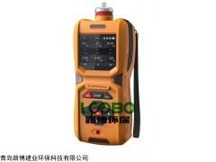 便携式氩气检测仪