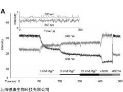 MX4542 Mag-Fura-2 AM 镁离子探针