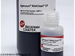 無內毒素質粒小提中量試劑盒(DP118)