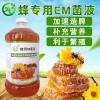 蜂用 em菌养蜂的好处和使用方法