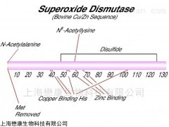 MP0920 SOD 超氧化物歧化酶