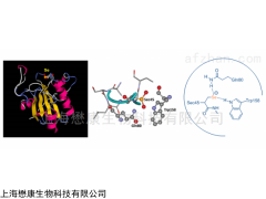 MP0509 GSH-Px 谷胱甘肽过氧化物酶