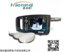 DL-838 宁夏固原奶牛肉羊繁育B超测孕