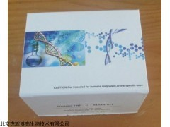 干血斑基因组DNA提取试剂盒(DP334)