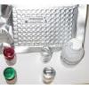 PDGFsR-α试剂盒 人血血小板衍生生长因子可溶性受体α试剂盒