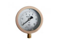 YE-100  膜盒压力表