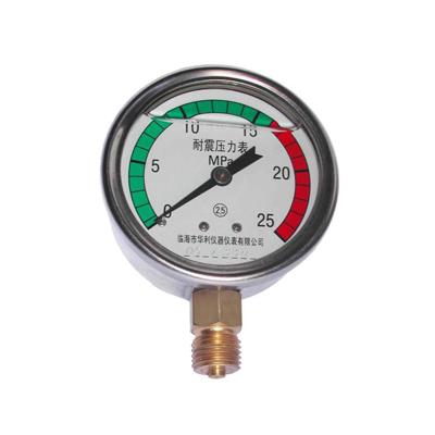 Y-60BFZ  不锈钢耐震压力表