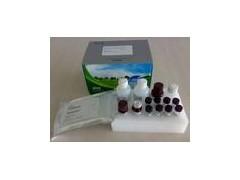 iFABP试剂盒厂家,兔子肠脂肪酸结合蛋白