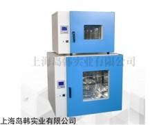 DHG-9240A 精密大型250度烘干箱电热恒温鼓风干燥箱