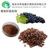 葡萄籽提取物厂家
