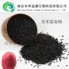 优质供应黑米提取物花色甙 98%厂家