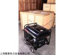 弧焊300A汽油发电电焊机