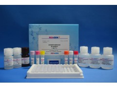 大鼠白介素2(IL-2)ELISA检测试剂盒