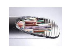 HYA室内电话电缆线19*2*0.5单价