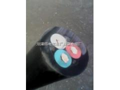 JHS-2芯16平方电缆 JHS水下橡胶电缆