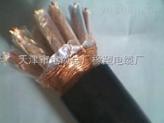 阻燃计算机电缆ZR-DJYPVP-1*3*0.75