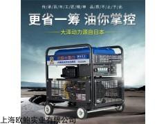 220V单用直流300A柴油发电机电焊机