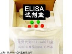 人麻疹病毒上海(Human)ELISA