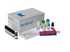 干细胞生长因子(SCF)ELISA试剂盒