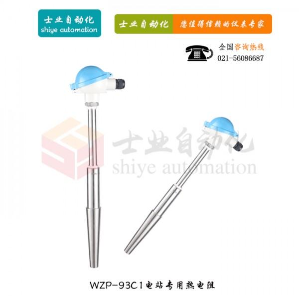 WZP-93C1 电站测温用热电阻