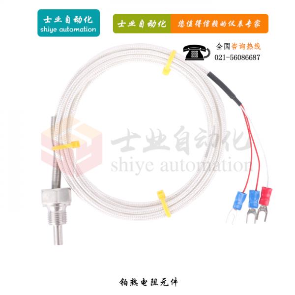 WZP-206S 铂热电阻元件
